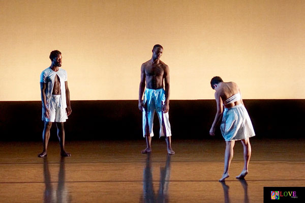 Jersey (New) Moves! Emerging Choreographers