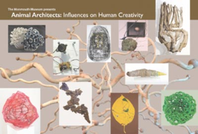 Animal Architects: Influences on Human Creativity  This Summer at the Monmouth Museum In Lincroft