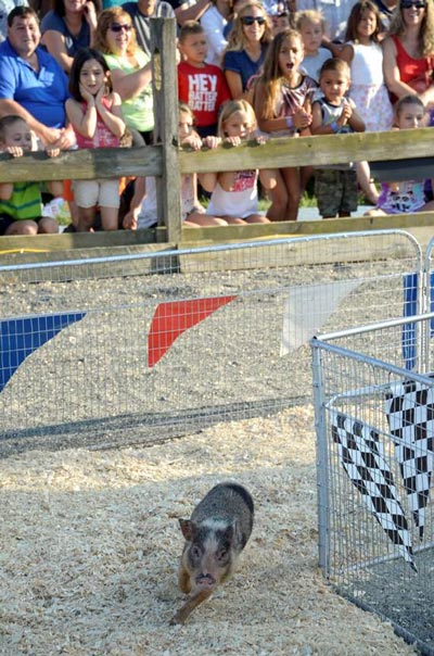 Monmouth County Fair Returns July 26