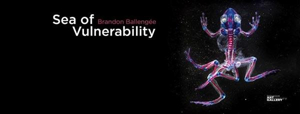 """Sea Of Vulnerability"" - An Exhibition By Scientist-Artist Brandon Ballengee At Rowan University Art Gallery"