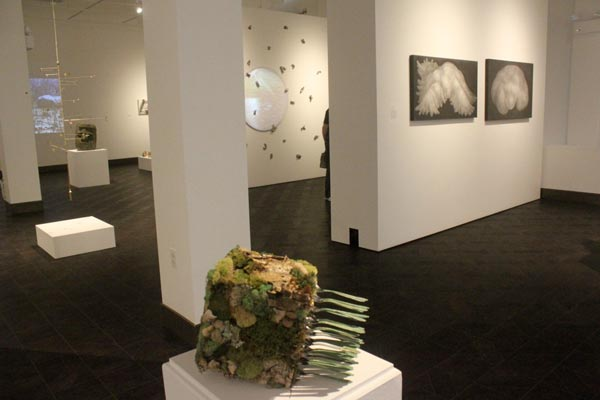 "New Jersey Artists Are ""Navigating Elements"" at Rowan University Art Gallery"