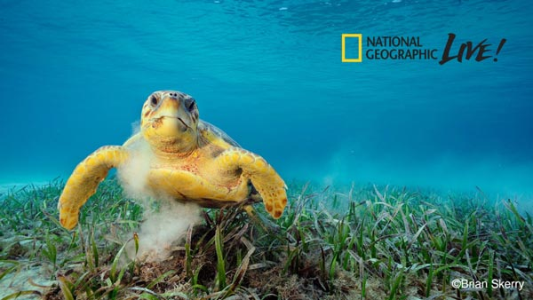 "Grunin Center Hosts National Geographic Photographer Brian Skerry with ""Ocean Soul"""