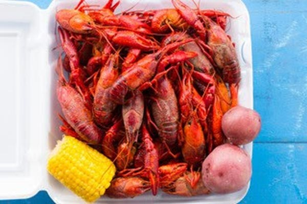 Michael Arnone's Crawfish Fest To Celebrate 30th Anniversary with Aaron Neville & Marcus King Band