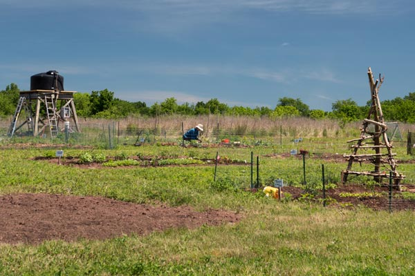 D&R Greenway Announces Pilot Year for  Community Victory Gardens at St. Michaels Farm Preserve