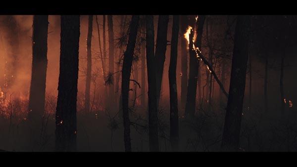 Q+A with The Pine Barrens Director David Scott Kessler