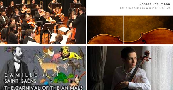 The Adelphi Orchestra Concludes Season With Outdoor Concert In Westwood On June 12th