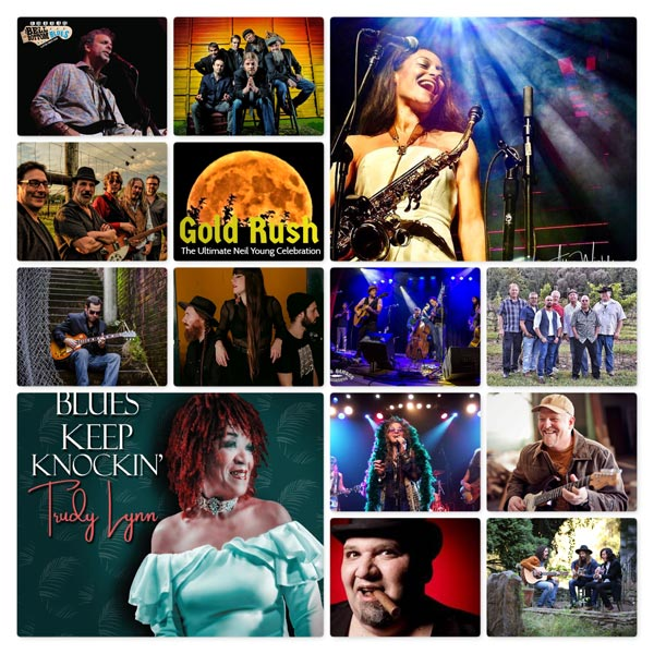 Lizzie Rose Music Room Presents The Pavilion in the Pines Summer Concert Series