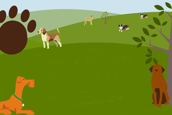 5th Annual Paws in the Park Takes Place On Saturday in Hawthorne